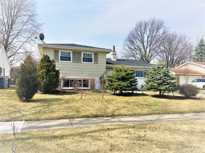 Du Page County Single Family Home New: 298 North Brashares Drive