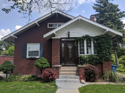 Elmhurst Single Family Home New: 295 North Elm Avenue