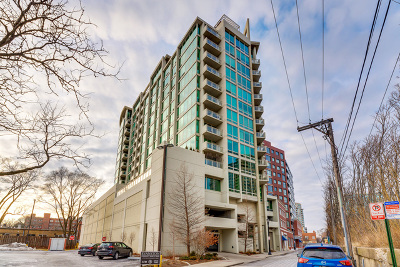 Cook County Condo/Townhouse New: 1570 Elmwood Avenue #910