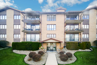 Cook County Condo/Townhouse New: 4001 West 93rd Place #3F