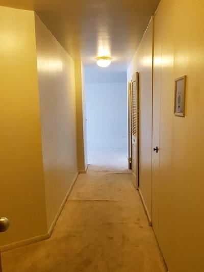 Condo/Townhouse New: 155 North Harbor Drive #205
