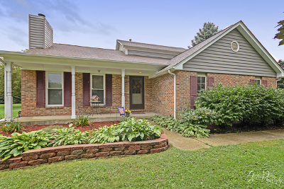 Mc Henry County Single Family Home New: 9812 North Hunters Lane