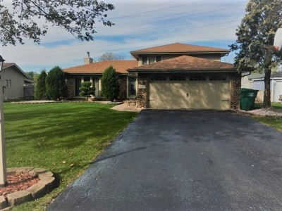 Orland Park Single Family Home For Sale: 14022 Hialeah Court