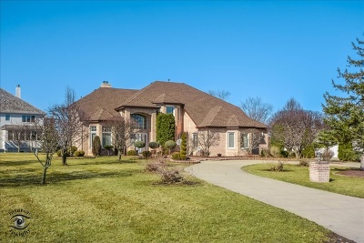 Orland Park Single Family Home For Sale: 120 Windmill Road