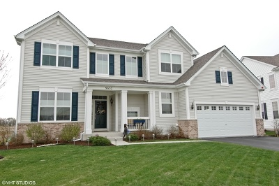 Huntley Single Family Home For Sale: 9652 Baumgartner Street
