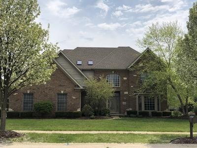 Plainfield Single Family Home New: 11633 Rushmore Drive