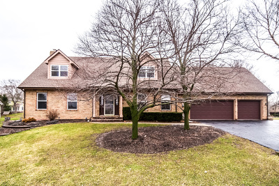 McHenry Single Family Home For Sale: 2809 Pleasant Drive