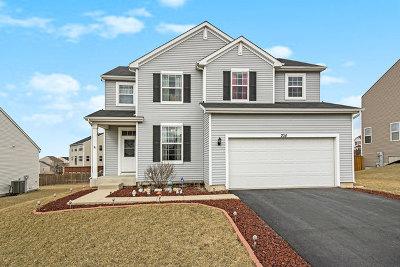 Minooka, Channahon Single Family Home New: 704 Avalon Way