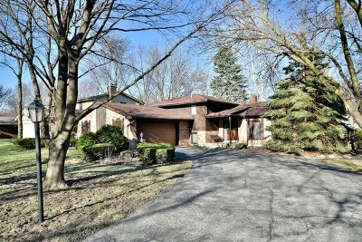 Bolingbrook Single Family Home New: 8111 Winter Circle Drive