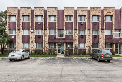 Chicago Condo/Townhouse New: 8667 1/2 West Foster Avenue #1B
