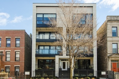 Chicago Condo/Townhouse New: 1033 South Racine Avenue #3NF