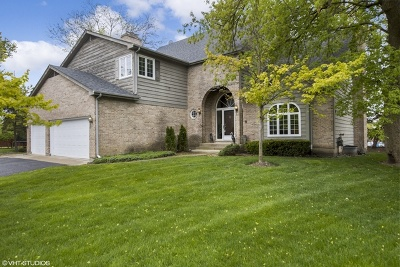 Palatine Single Family Home New: 347 East Shady Pines Court