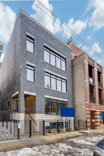 Chicago Condo/Townhouse New: 2114 West Belmont Avenue #1
