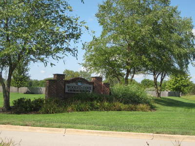 Elwood Residential Lots & Land For Sale: 21253 South Wooded Cove Drive
