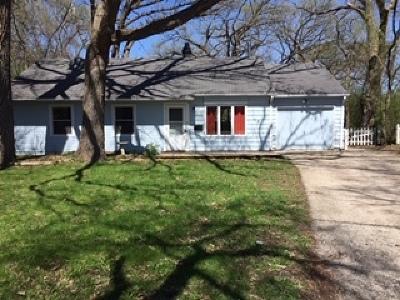 Streamwood Single Family Home For Sale: 20 East Pine Street