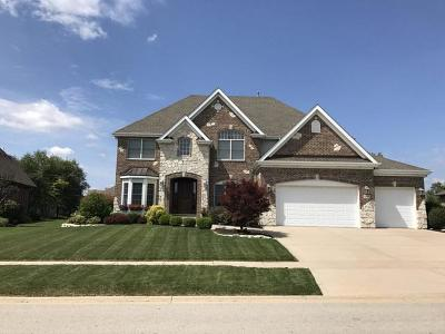 Shorewood Single Family Home New: 21304 South Forest View Drive