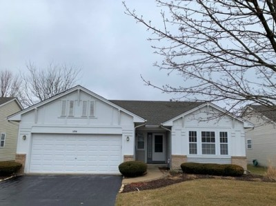 Oswego Single Family Home For Sale: 504 Parkland Court