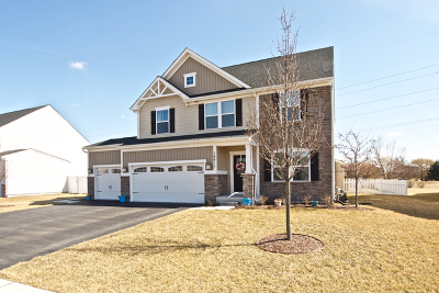 Plainfield Single Family Home New: 16611 Lewood Drive