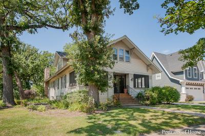Du Page County Single Family Home New: 246 South Oak Street