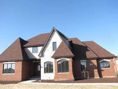 Homer Glen Single Family Home New: 14438 West Anne Court
