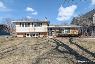 Naperville Single Family Home New: 553 Cypress Drive