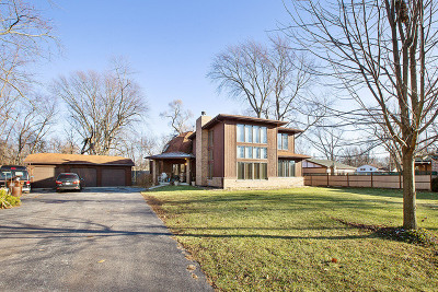 Tinley Park Single Family Home New: 17625 Ridgeland Avenue