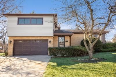 Palatine Single Family Home New: 167 South Cedar Street