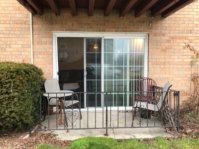 Chicago Ridge Condo/Townhouse New: 7110 Oconnell Drive #1E