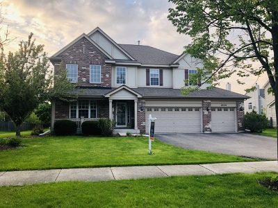 Plainfield Single Family Home New: 26216 Mapleview Drive