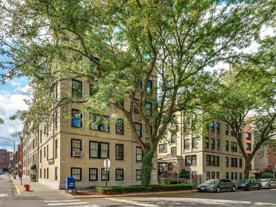 Condo/Townhouse New: 3608 North Pine Grove Avenue #1M