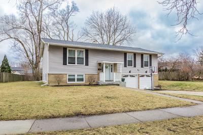 Palatine Single Family Home New: 40 South Arlene Avenue