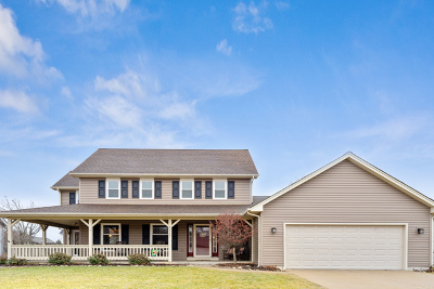 McHenry Single Family Home New: 3117 West Bretons Drive