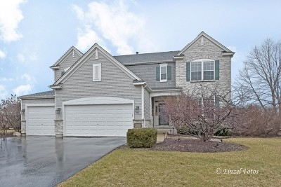 Carpentersville Single Family Home New: 3819 Parsons Road