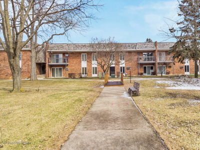 Downers Grove Condo/Townhouse New: 4133 Saratoga Avenue #B-109