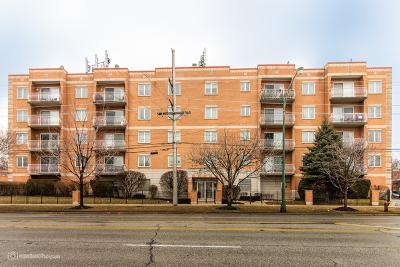 Chicago Condo/Townhouse New: 4534 North Cumberland Avenue #108