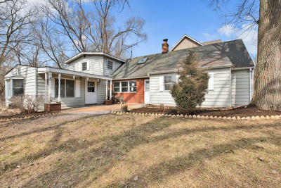 Spring Grove Single Family Home For Sale: 38024 North Lee Avenue