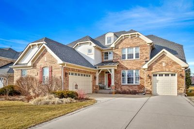 Schaumburg Single Family Home New: 1352 Grantham Drive