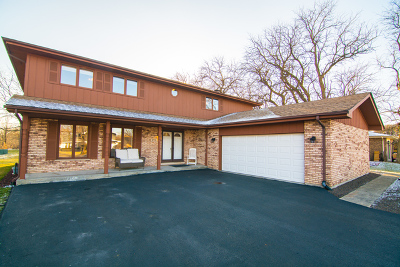 Orland Park Single Family Home New: 8551 Wheeler Drive