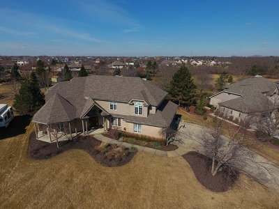 Mokena Single Family Home Price Change: 21222 Prestancia Drive