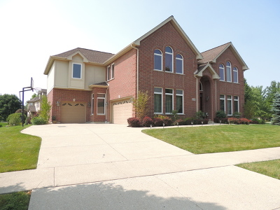 Vernon Hills Single Family Home For Sale: 2119 Beaver Creek Drive