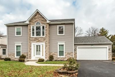 Naperville Single Family Home New: 625 Zaininger Avenue