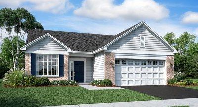 Algonquin Single Family Home For Sale: 2220 Indigo Drive