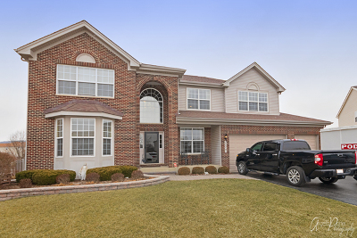 McHenry Single Family Home New: 227 Tralee Lane