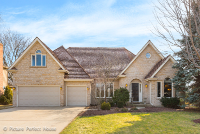 Naperville Single Family Home New: 2267 Palmer Circle