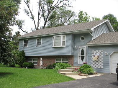 Palatine Single Family Home New: 253 North Clyde Avenue