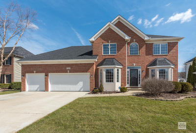Naperville Single Family Home New: 5308 Bundle Flower Court
