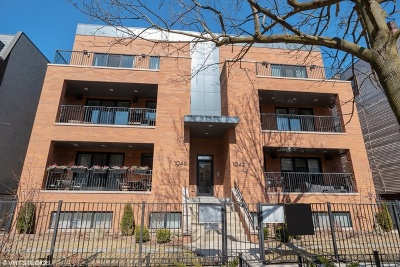 Condo/Townhouse New: 1042 West Altgeld Street #2