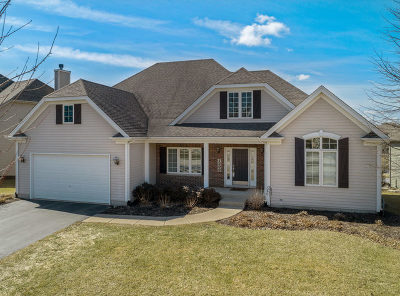 Elburn Single Family Home For Sale: 1300 Soldier Court