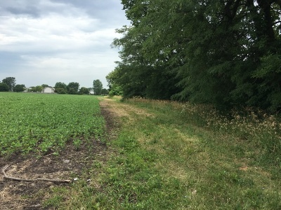 Aurora  Residential Lots & Land For Sale: 03428 Indian Trail
