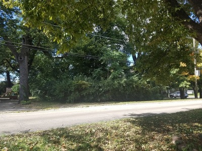 Wilmington Residential Lots & Land For Sale: 0000 North Kankakee Street